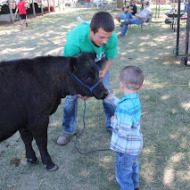 Showing Livestock at our County Fair