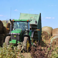 Chopping Silage on the Farm