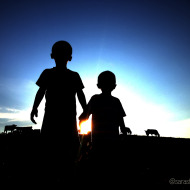 Farmkids Cows Sunset