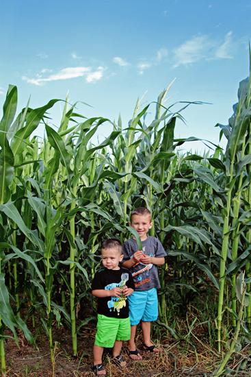 Kids & Corn