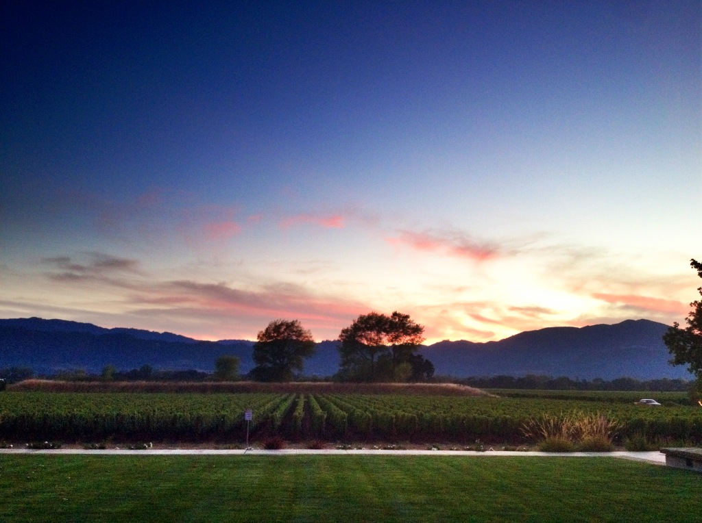 Silver Oak WInery Sunset