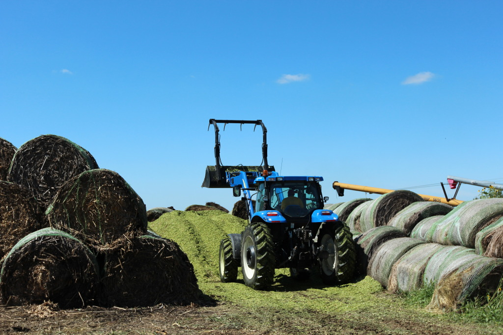Packing Silage with Tractor