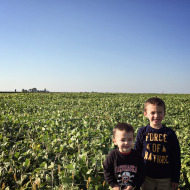 Wordless Wednesday: Crops are starting to turn!