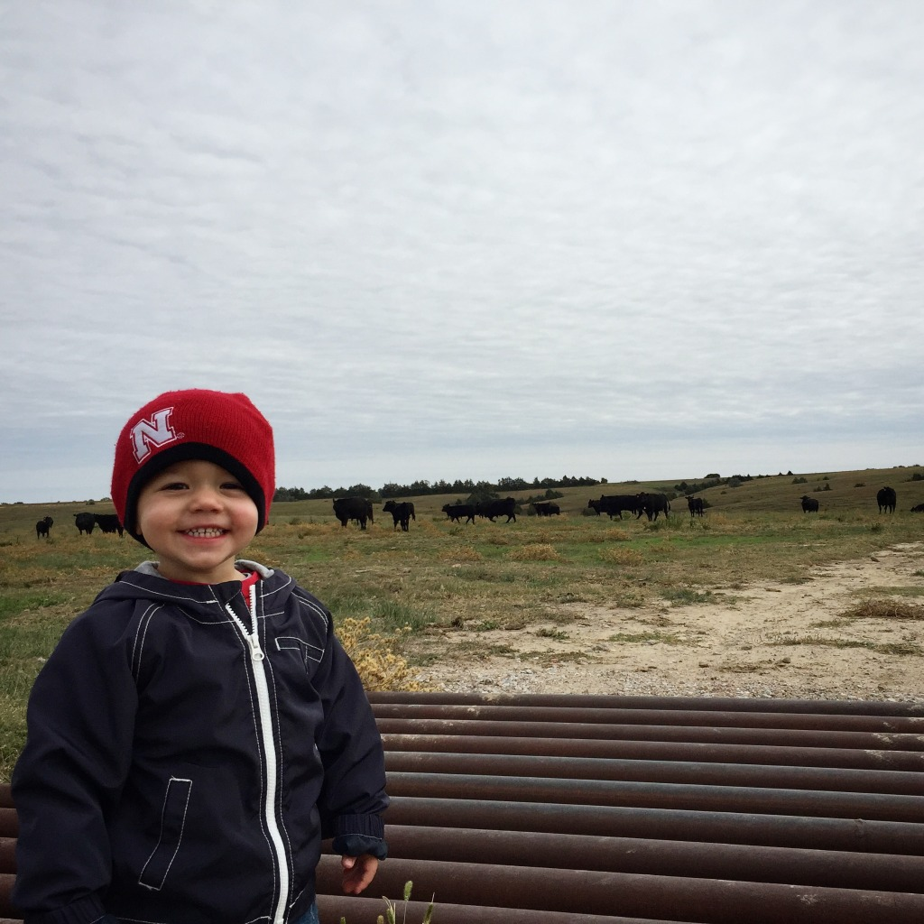 Farmkid with Cattle in Background