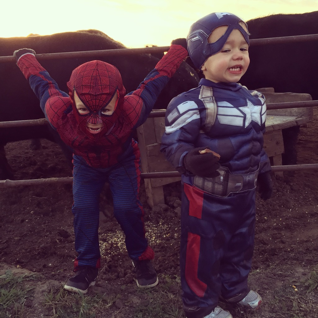 Spiderman and Captain America with Bulls in Background
