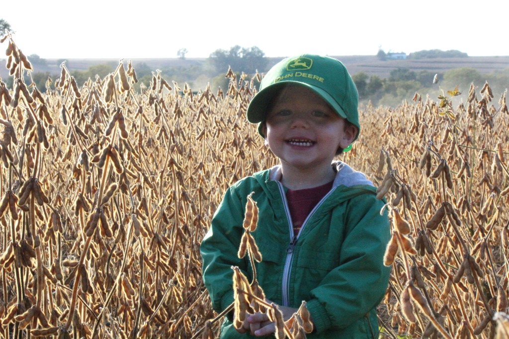 Farmkid in soybean field