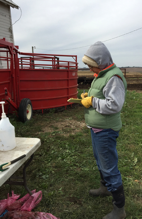 Rhonda Helping with Cattle-www.saras-house.com
