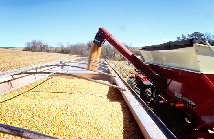 Unloading Corn onto a Semi Truck-www.saras-house.com
