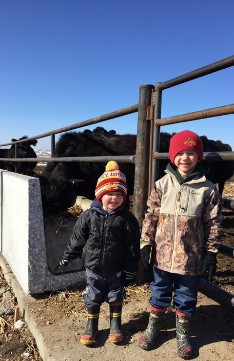 Farm Kids Checking Cows