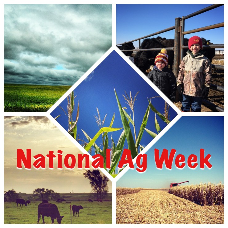 National Ag Week  www.saras-house.com