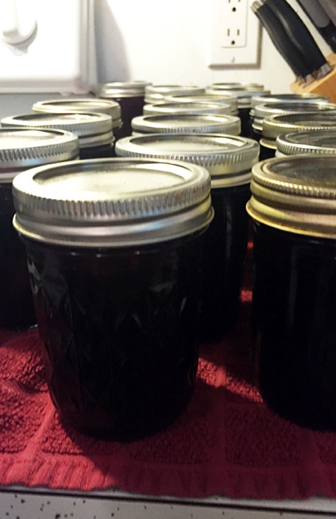 Elderberry Peach Jam at www.saras-house.com