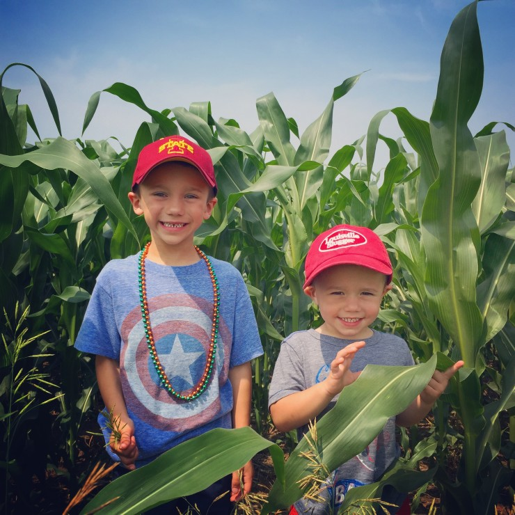 """""""Knee High by the 4th of July"""" Corn at www.saras-house.com"""