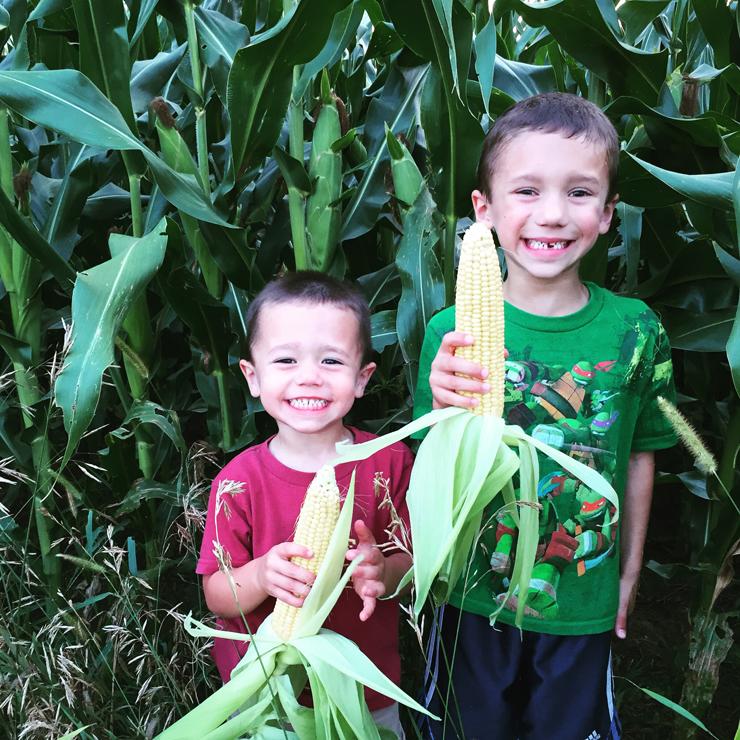7th Generation Farmers at www.saras-house.com