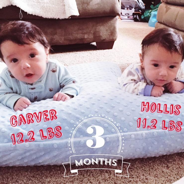 Carver & Hollis 3 months