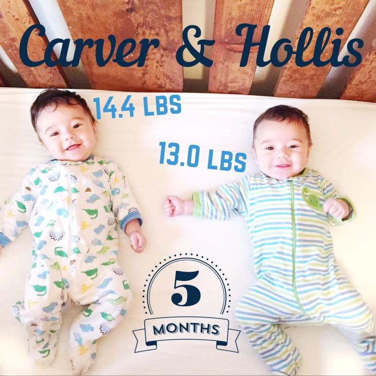 Carver & Hollis 5 Months