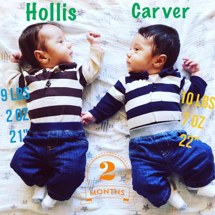 Hollis & Carver 2 months