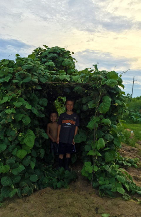 Boys in Pole Bean Tunnel at www.saras-house.com