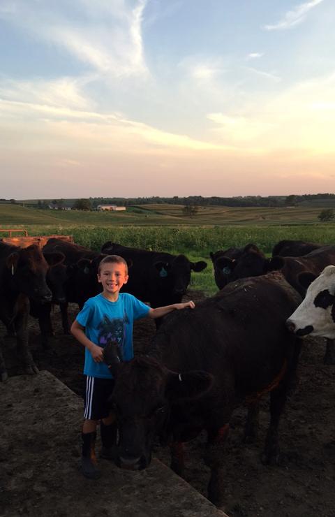 Hudson Scratching a Cow