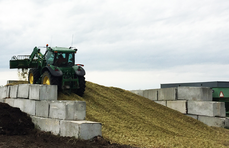 Tractor Packing Silage in the Pit