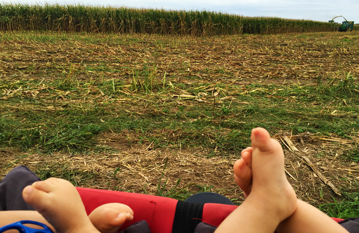 Farmkids watching corn being chopped for silage